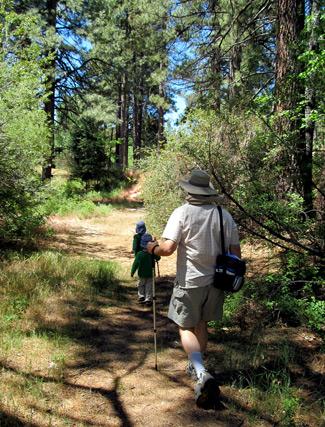 Hiking in Idyllwild Park, California