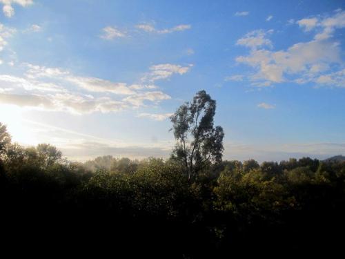 Wordpress weekly photo challenge: peaceful sunrise