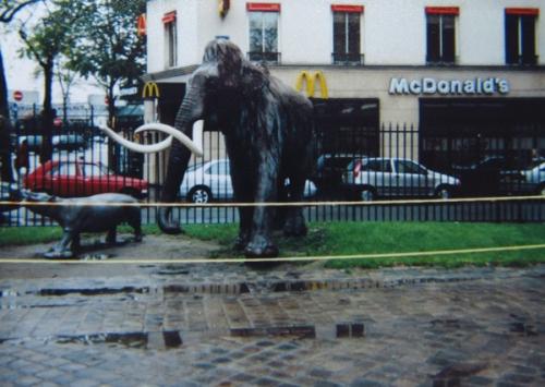Weekly WordPress photo challenge: Merge - Mammoth in front of McDonald's in Paris