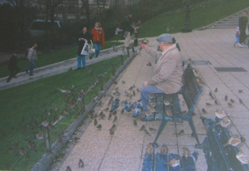 Weekly WordPress photo challenge: Urban - old man feeding the pigeons in Paris