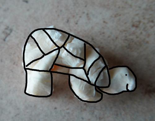Popcorn art - a turtle