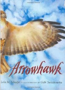 Arrowhawk by Lola M. Schaefer