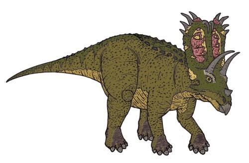 Pentaceratops / five-o-saurus