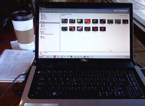 Wordpress weekly photo challenge: Good Morning! Working at the coffee shop
