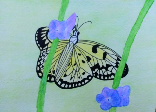 Paper kite butterfly in watercolor pencils and black liner